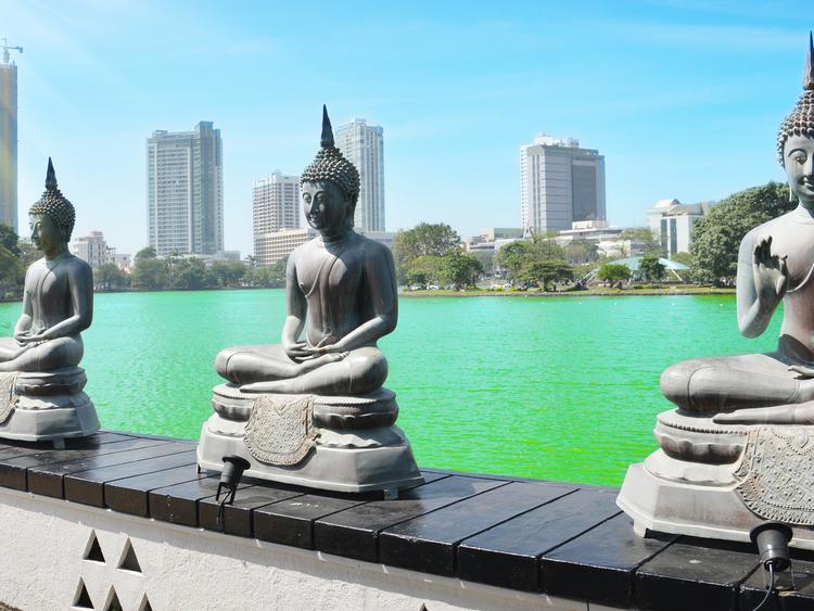 Colombo dating platser